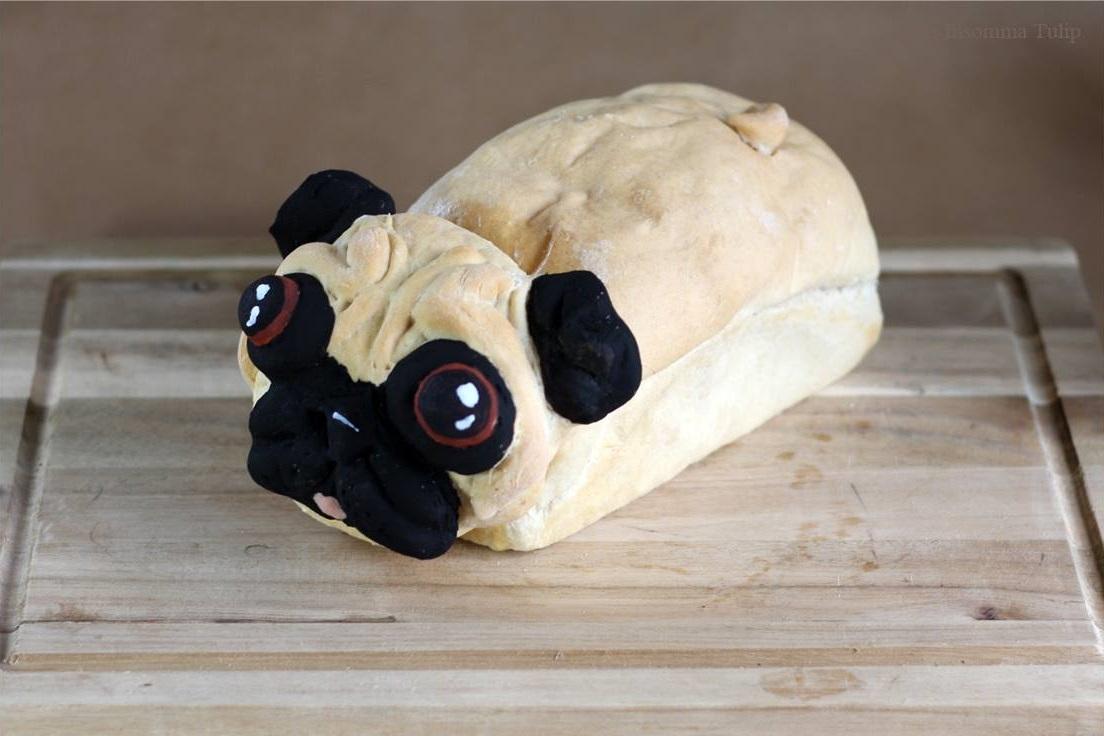Pugloaf pain chien Lou Lou P