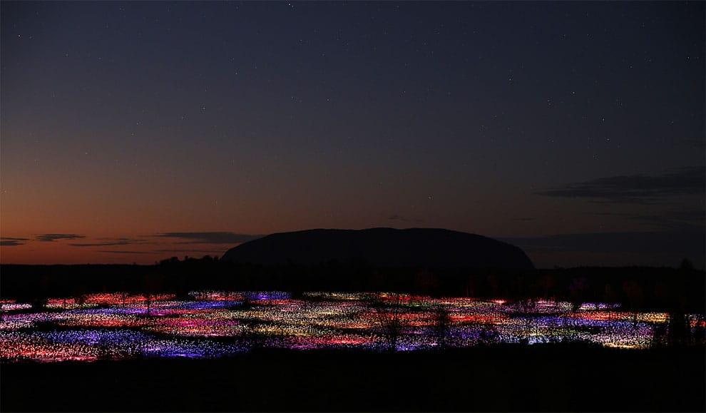 Bruce Munro installations lumineuses Field Of Light