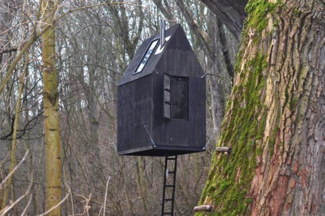 Flying Black House