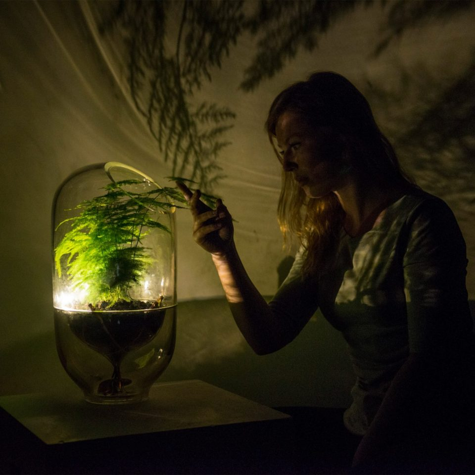 Living Light lampes photosynthèse des plantes Ermi van Oers