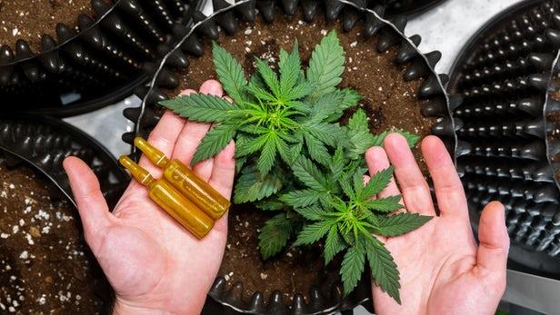Epidiolex – Le premier médicament dérivé de la marijuana approuvé aux Etats-Unis
