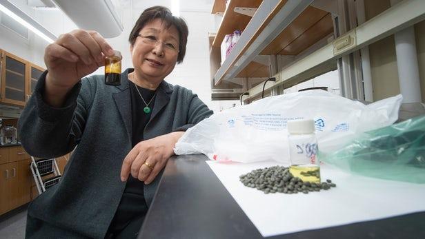 Donner une nouvelle vie aux déchets plastiques comme carburant grâce à un processus de conversion chimique