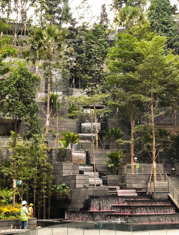 Safdie Architects installe la plus haute cascade d'intérieur au monde dans l'aéroport Jewel Changi de Singapour 2