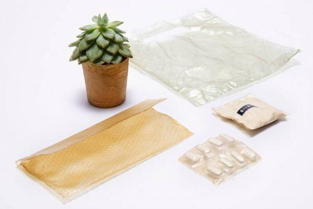 Shellworks crée un emballage durable avec des coquillages de fruits de mer 1
