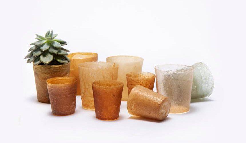 Shellworks crée un emballage durable avec des coquillages de fruits de mer