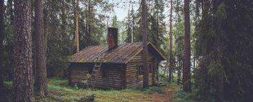 Voyager gratuitement en Finlande cet été, c'est possible