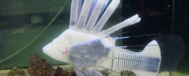 Robo-fish est alimenté par un fluide de batterie semblable à du sang