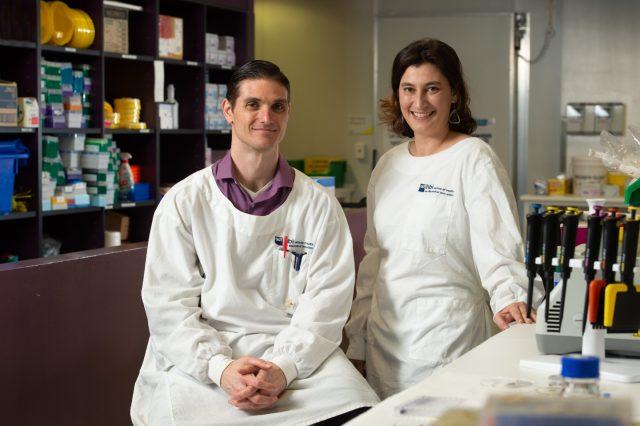 Des antibiotiques hybrides surpuissants créés à la Queensland University of Technology