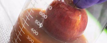 Les œufs jetés sont utilisés pour conserver la fraîcheur des fruits et légumes