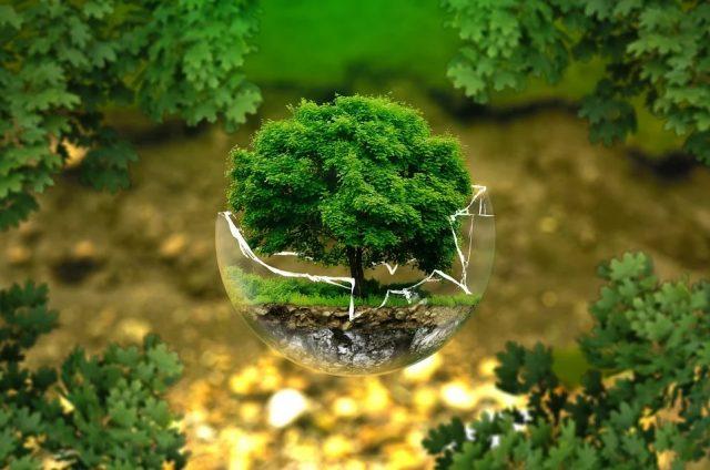 Les podcasts sur l'écologie la tendance forte de l'été 2021