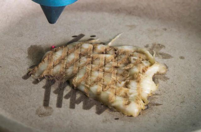 Imprimer des aliments en 3D et les cuire au laser